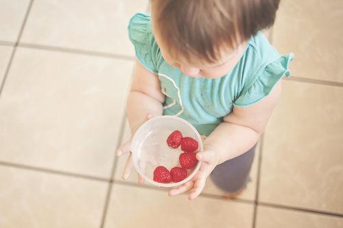 dítě drží misku s malinami